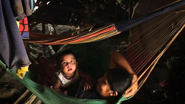 Matthew Twomey -  - Missing Microbes Trailer
